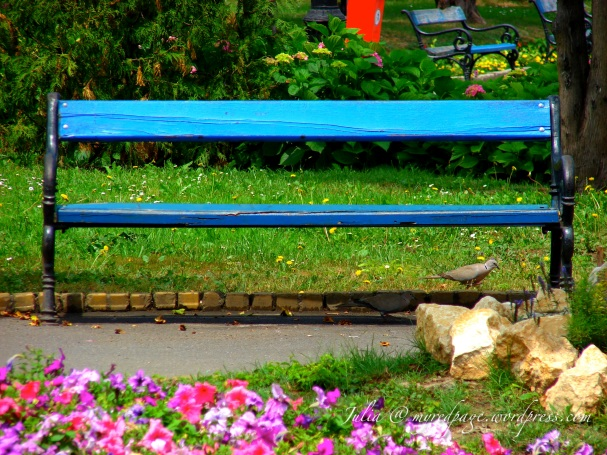 The Park Bench