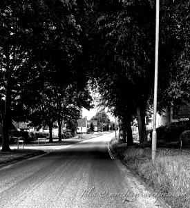 Journey ( Black&White )