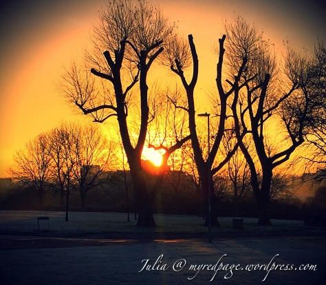 Winter Mornings-1